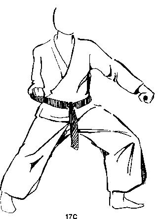 Karate term papers